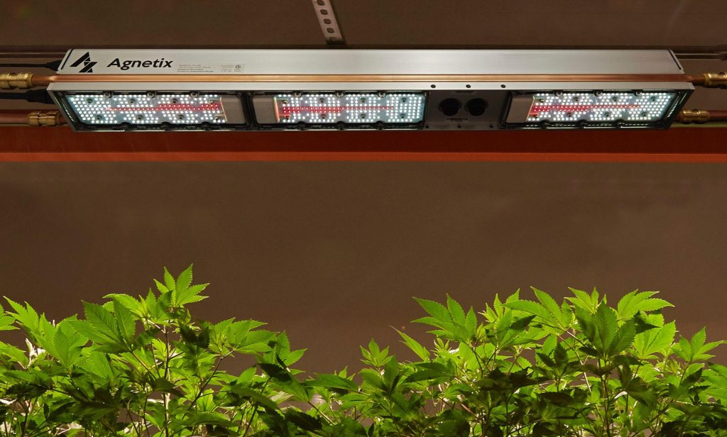 Agnetix water-cooled grow light over plants