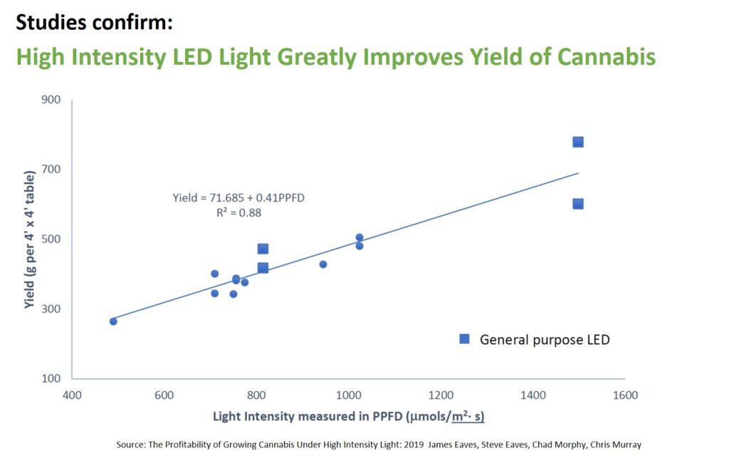 The Profitability of Growing Cannabis Under High Intensity Light